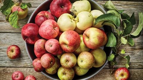 Fiesta de la Manzana